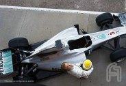 MercedesGP-Petronas.F001.F1ShortMessage.2010.500x343